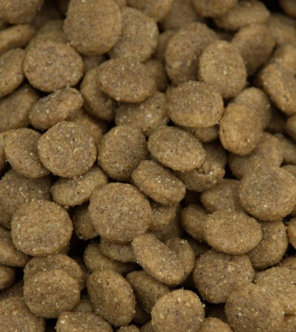Natural pet food kibble made in Canada BC