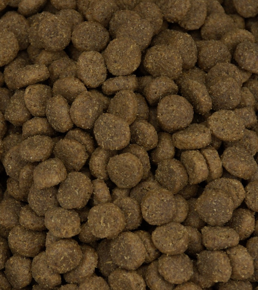 Why Is Grain Wheat Soy In Dog Food