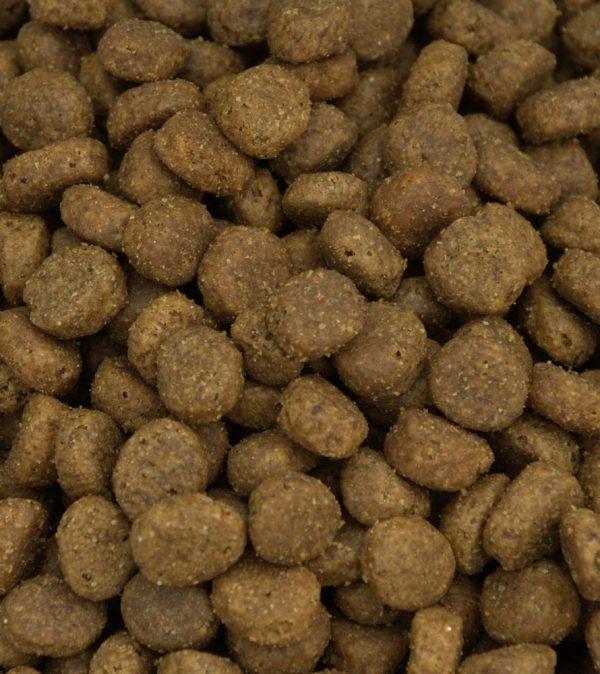 Superfood grain free dog food kibble